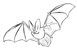 100 halloween bat coloring pictures bat coloring pages