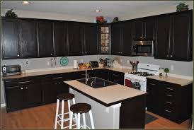 Staining Kitchen Cabinets White Kitchen Fabulous Gel Stain Prep Gel Stain Over White Cabinets