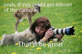 That D Be Great Meme - yeah if you could get infront of the camera that d be great