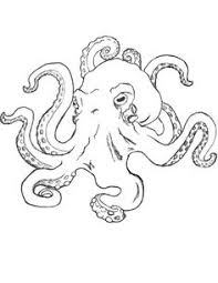 coloring pages surprising sketch of an octopus original by