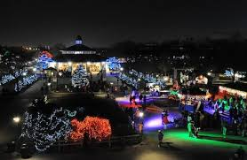 brookfield zoo winter lights is bright at these city and suburban holiday light displays