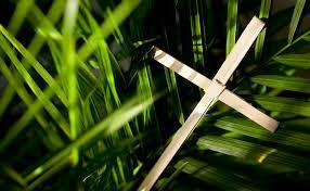 where to buy palms for palm sunday faith united methodist church lent easter