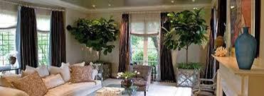 home interior sales indoor plant rental leasing sales and maintenance san