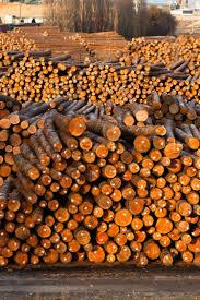 the benefits of buying mill direct hardwood floors t g flooring
