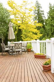 Backyard Shade Trees Boundary Fence And Supply U0027s Best Shade Trees For Keeping Cool