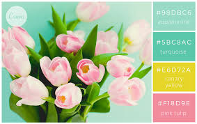 canva color palette ideas 100 brilliant color combinations and how to apply them to your
