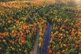 Michigan Travel Alone images 10 reasons to road trip around michigan in the fall jpg