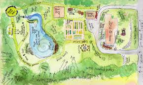 permaculture design the druid u0027s garden