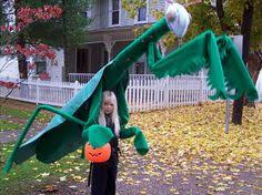 Dragonfly Halloween Costume Awesome Dragonfly Couple Halloween Costume Couple Halloween