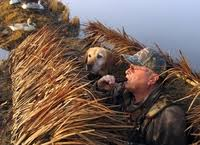 Boat Duck Blinds For Sale Duck Hunting Blinds Fast Grass Mats Duck Boat Blinds