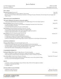 examples of resume title elements of a good resume sleep technician sample resume it elements of a good resume free resume example and writing download key elements of a good