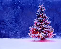 Outdoor Christmas Tree Decorations by Christmas Tree Outside Decorations U2013 Decoration Image Idea