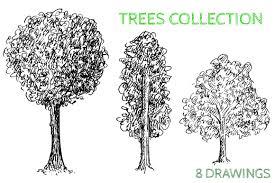 hand drawn trees objects creative market