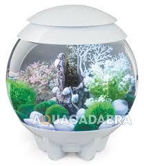 oase biorb halo 15l 30l 60l led light fish tank aquarium tropical