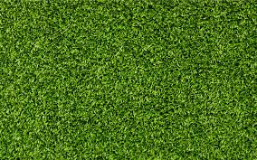 grass vinyl flooring nature idea loversiq