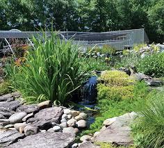 Family Garden Center Exploring The Garden Centers Of Hampton Roads Garden Center Magazine