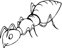 ant coloring pages learn language me