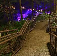seattle city light seattle wa seattle city light skagit tours dam good chicken dinner ladder