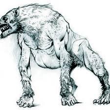 werewolf witcher wiki fandom powered by wikia