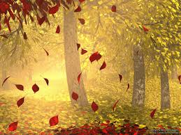 Fall Autumn by Autumn Leaves 3d Art Abstract Autumn Colorful Fall Fall Offs