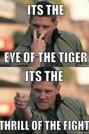Eye Of The Tiger Meme - eye of the tiger supernatural pinterest supernatural