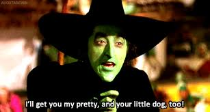 Wicked The Musical Memes - wicked witch of the west gifs get the best gif on giphy