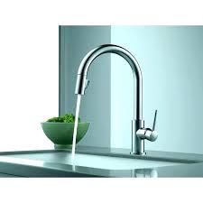 pegasus kitchen faucets pegasus kitchen sink evropazamlade me
