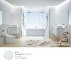 candice olson choosing benjamin moore bathroom paint colors