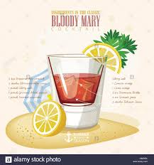 cocktail illustration vector illustration of popular alcoholic cocktail bloody mary