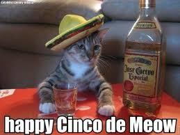 Mexican Sombrero Meme - 21 events to check out this cinco de mayo