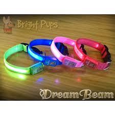 Light Up Dog Collar Dream Beam Led Light Up Dog Collar Usb Rechargeable Bright Pups