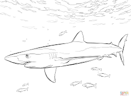 blue shark with pilot fishes coloring page free printable