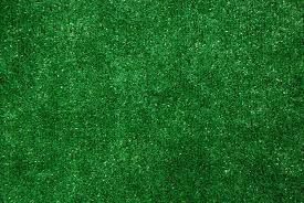 Grass Area Rug Imposing Design Grass Carpet Indoor Outdoor Green