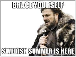 Swedish Meme - swedish summer is no joke stuff pinterest memes humor and