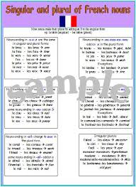 expand your french french singular and plural nouns poster