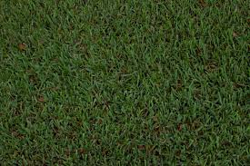 Astro Turf Clean And Green Grass 2 14textures
