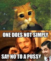 Puss In Boots Meme - puss in boots pictures and jokes funny pictures best jokes