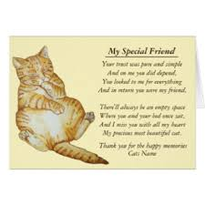 pet condolences cat sympathy poems
