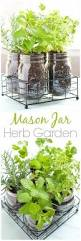 small indoor garden ideas mason jar diy herb garden how to grow your herbs indoor