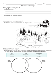 Food Chains Worksheet 3 Review Worksheet