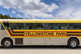 Wyoming travel buses images Yellowstone national park wyoming usa may 31 205 close up of jpg