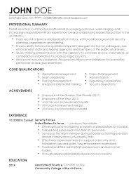 Faking Resume Experience Professional Security Resume Resume For Your Job Application