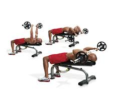 workout bench exercises home design inspirations