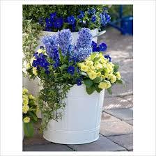 37 best container gardening recipes images on pinterest garden
