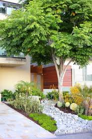 Modern Front Yard Desert Landscaping With Palm Tree And Forget The Traditional Look U2013 Modern Front Yard Landscaping Ideas