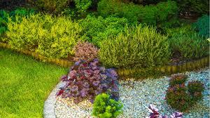 seattle landscaping and gardening services in bellevue kirkland