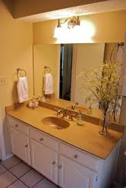 bathroom paint ideas featuring brown laminated wooden wall and