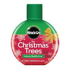 Planting Christmas Tree Seedlings Shop Miracle Gro For Christmas Trees 8 Fl Oz Tree And Shrub Food At