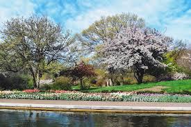 morning at the brooklyn botanic garden