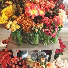 flower shop send flowers exeter nh florist cymbidium floral cymbidium